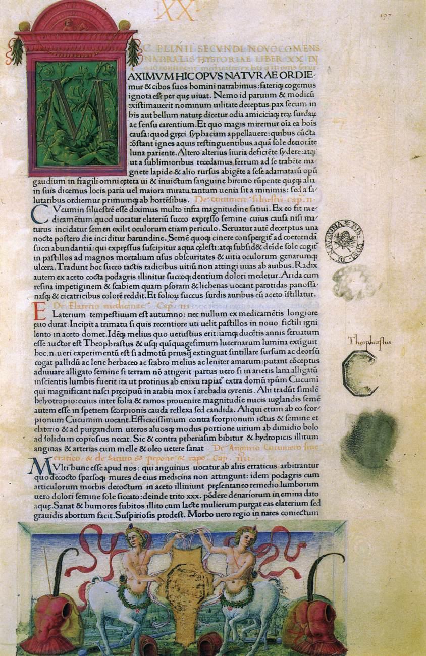Плиний младший: биография и фото 43